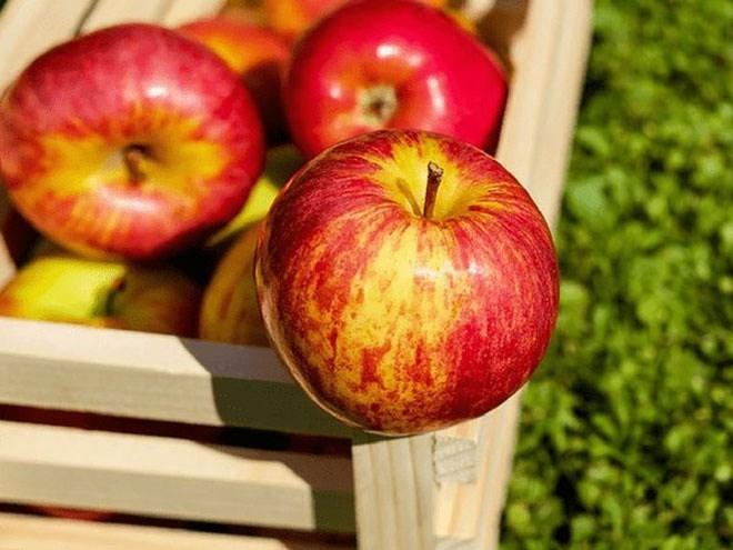 8 thực phẩm ăn sai giờ nguy hiểm khôn lường - Ảnh 5