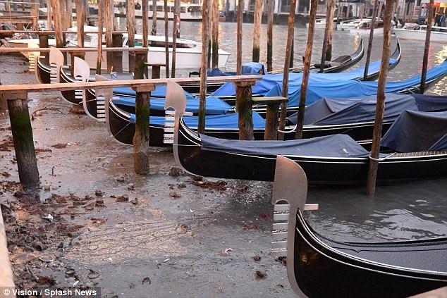 Hàng loạt kênh đào ở Venice cạn trơ đáy sau siêu trăng - Ảnh 3