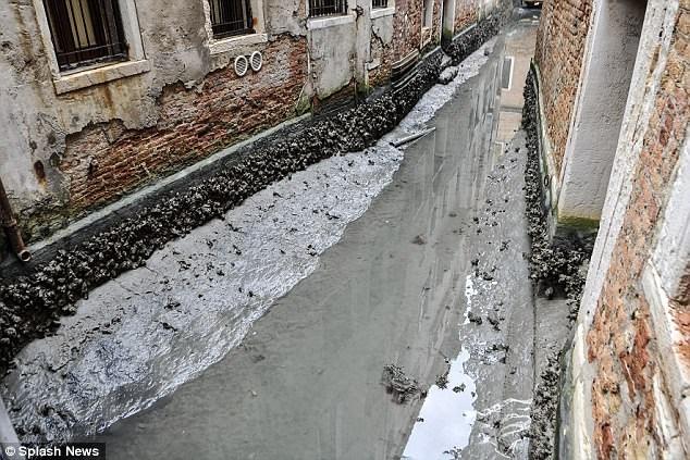 Hàng loạt kênh đào ở Venice cạn trơ đáy sau siêu trăng - Ảnh 5