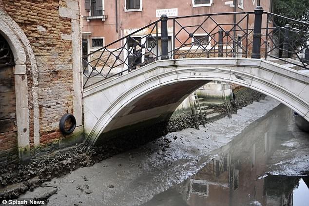 Hàng loạt kênh đào ở Venice cạn trơ đáy sau siêu trăng - Ảnh 7