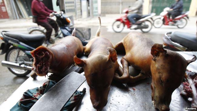 Thịt chó được bày bán ở Việt Nam.