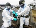 Nhật Bản: Nghi vấn thêm 3 thực tập sinh Việt bị đưa đi dọn dẹp phóng xạ