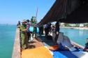 Vớt nhầm 'bom Trung Quốc' ở biển Hoàng Sa, 3 ngư dân Việt thiệt mạng