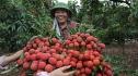 Kỳ tích 5.800 tỷ: Bắc Giang làm chuyện chưa từng có Việt Nam