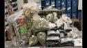 San Jose: Bắt giữ 2 trùm ma tuý xuyên bang gốc Việt