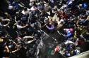 Nghị viện châu Âu lên án Mỹ đối xử 'kinh khủng' với người di cư