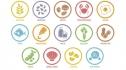 Dị ứng thực phẩm: Nhà hàng phải làm gì để bảo vệ thực khách?
