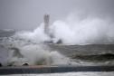 Nhật Bản cứu trợ tàu có người Việt bị đắm do bão Hagibis