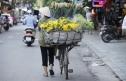 Việt Nam: Cơ hội xuất khẩu độc đáo cho các công ty Séc