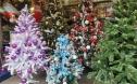 Cận Giáng sinh, cây thông Noel khổng lồ