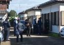 Nhật Bản bắt hai người Việt Nam vì nghi trộm lợn