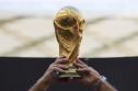 World Cup hai năm một lần, kẻ gật người lắc