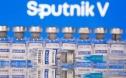 WHO trở lại Nga, chuẩn bị cấp phép Sputnik V?